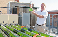 Dr. Rittmann sampling photosynthetic bacteria from the biofuels project Tubes in the Desert