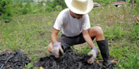 Biochar and Sustainable Development
