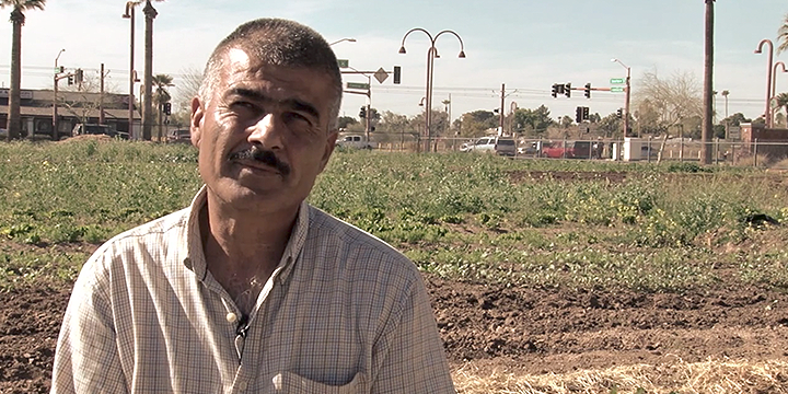 Promised Land: Refugee Farming in Phoenix