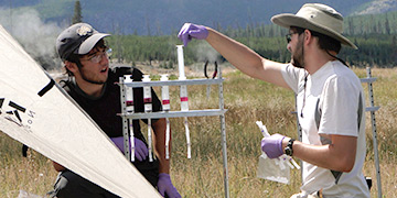 Two people in a field conducting sample research