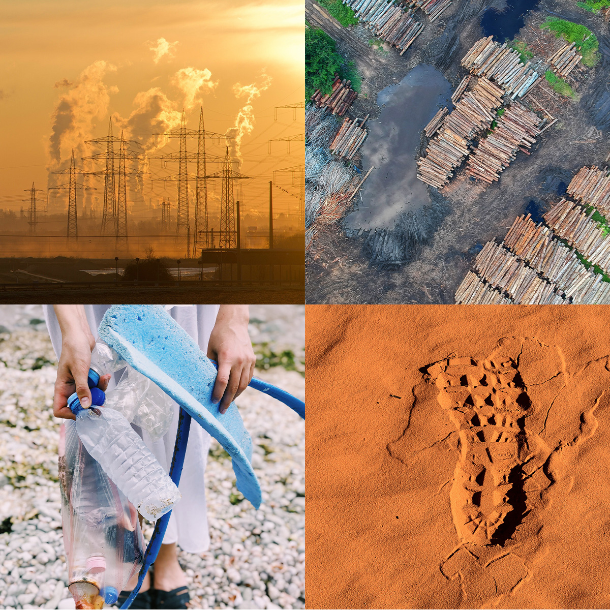 collage of images containing smoke stacks deforestation plastics footprint in sand