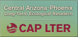 Central Arizona–Phoenix Long-Term Ecological Research