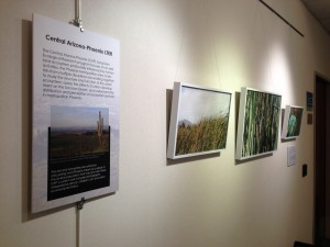 Cardenas' photographs on display