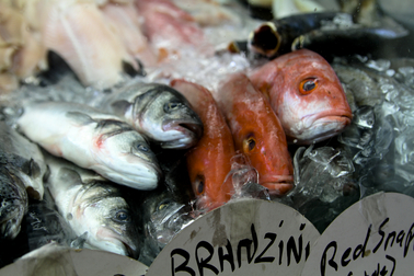 Fish in ice container to be sold