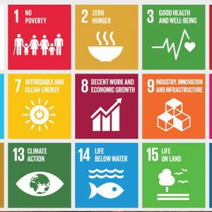 Color squares showing various images for SDGs