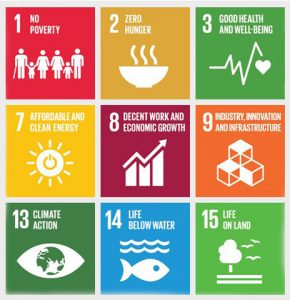 Nine color squares listing nine of the UN's Sustainable Development Goals