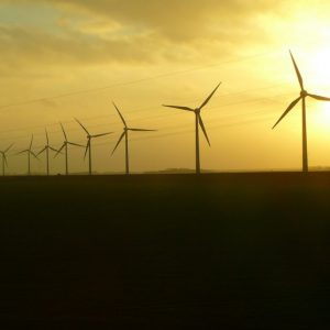 Large wind turbines in front of sunset in field.