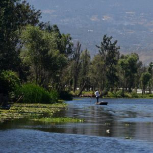 A man stands as he rows down a river in Mexico