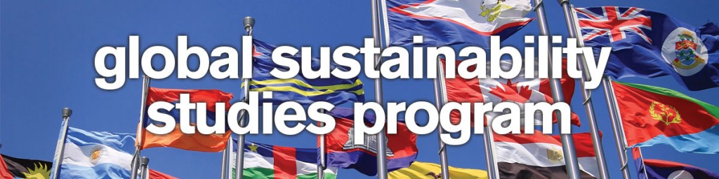 Image of Flags From Around the World. The Global Sustainability Studies Program