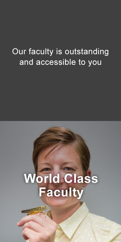 World class faculty. Our faculty is outstanding and accessible to you.