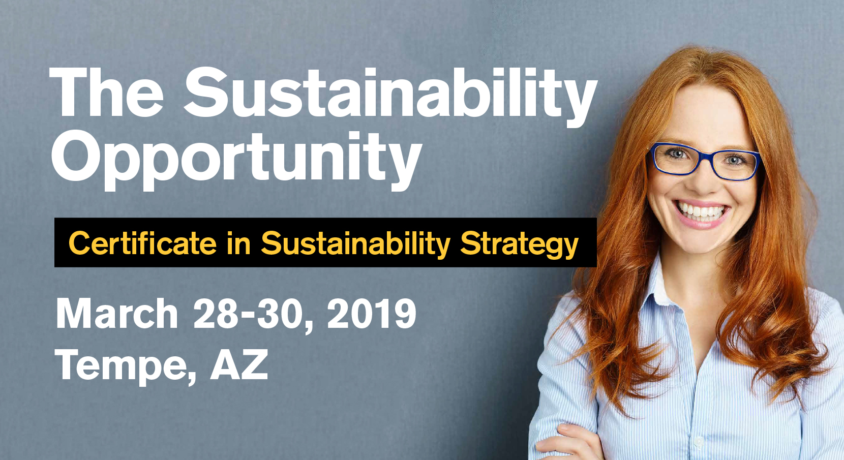 The Sustainability Opportunity - Certificate in Sustainability Strategy