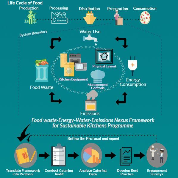 Life Cycle of Food graphic