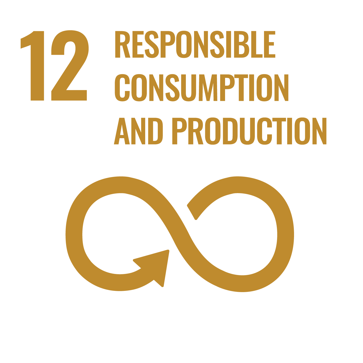 SDG12-sustainable consumption